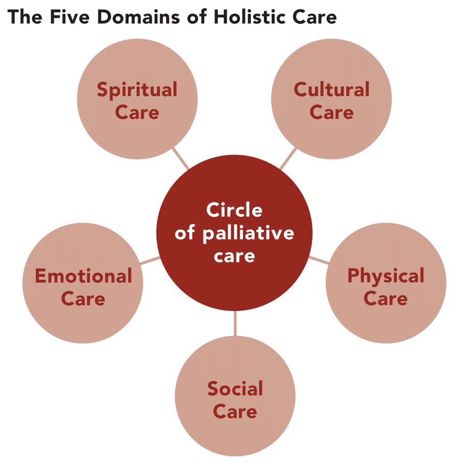 The five domains of holistic care