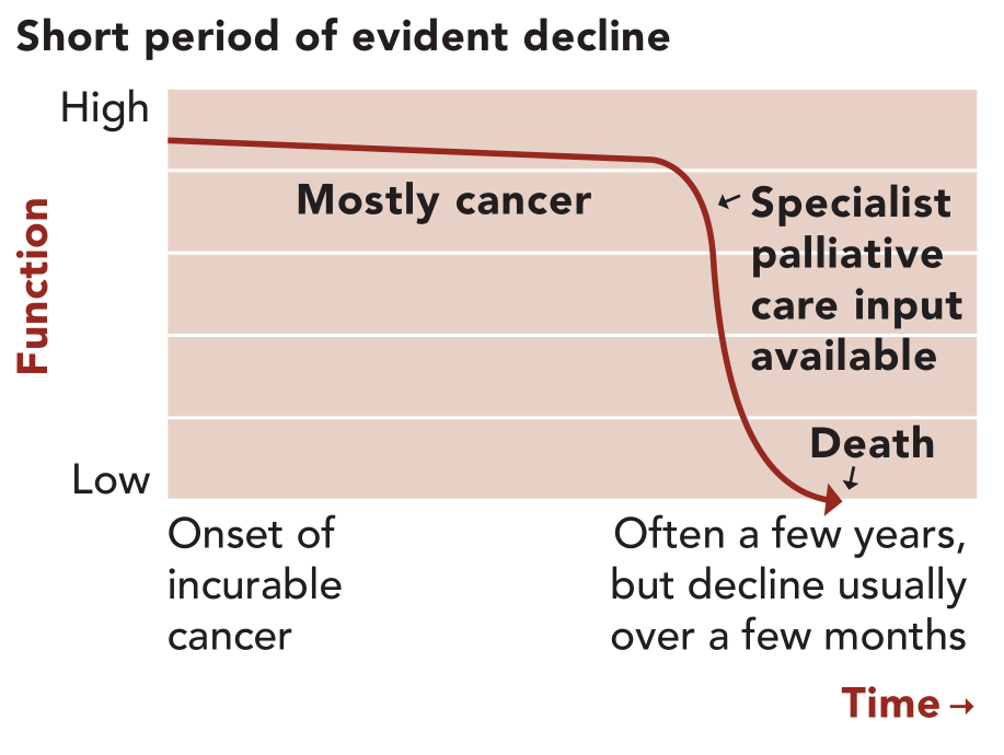 Illness Trajectory 1: short period of evident decline