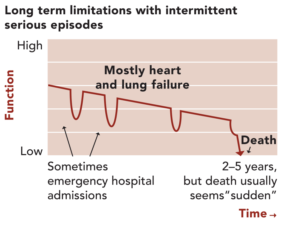Illness Trajectory 2: long term limitations with intermittent serious episodes