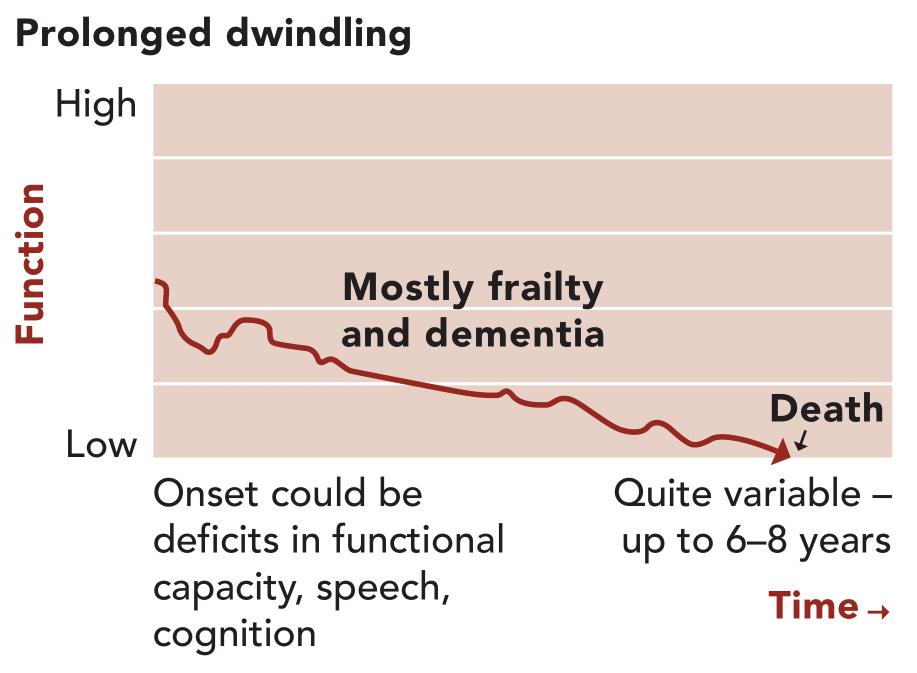 Illness Trajectory 3: prolonged dwindling
